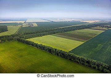 vue aérienne, au-dessus, les, vert, champs