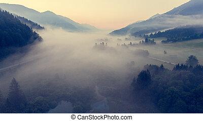 vue aérienne, brume, planer, travers, a, valley.