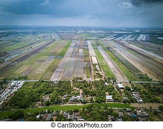 vue aérienne, de, champ riz