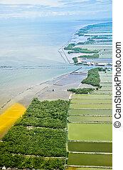 vue aérienne, de, champ riz, terrasses, dans, thaïlande
