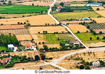 vue aérienne, de, vert, champs