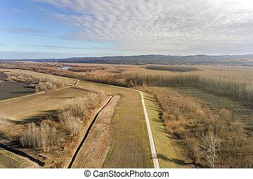 vue aérienne, les, rivière, sur, forêt automne, plain.