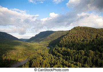 vue aérienne, sur, les, forêt, et, rivière