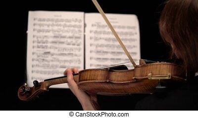 vue., arcs, derrière, feuilles, violon, noir, haut, fond, ...