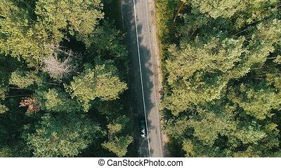vue dessus, de, route rurale