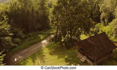 vue, spooky, aérien, forest., cabine, bois, ancien