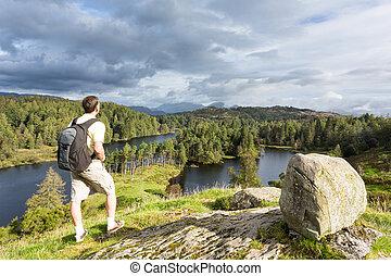 vue, sur, tarn, hows, dans, district anglais lac