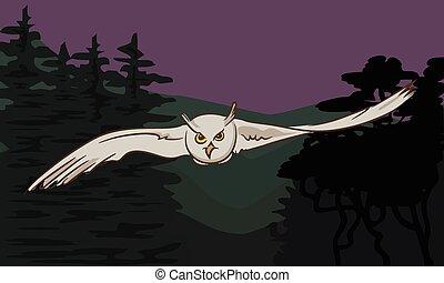 vuelo, alas, extendido, búho