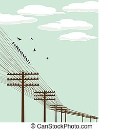 vuelo, aves
