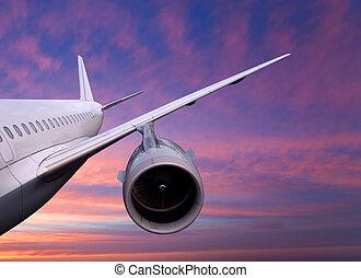 vuelo, ocaso, avión