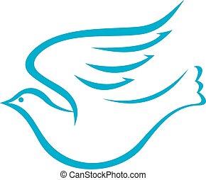 vuelo, paloma, o, pájaro, de, paz
