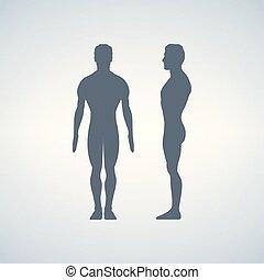 vues, figure., dos, illustration, ou, s, vecteur, silhouettes., devant, côté, homme