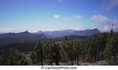 vulkanisch, evergreen, snel, nevel, timelapse., eiland, naald, bos, bergen, beweging, nat, vallei, wolken