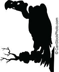 vulture, um, pretas, vetorial