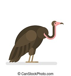 Vulture. Wild bird with brown feather and beak