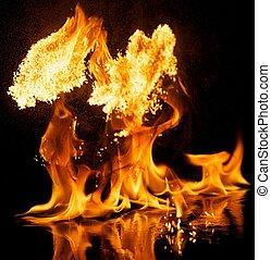 vuur, ontploffing, vrijstaand, op, zwarte achtergrond