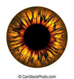vuur, oog