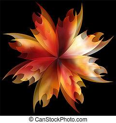 vuur, roos, het vlammen, bloem kroonblad