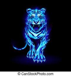 vuur, tiger