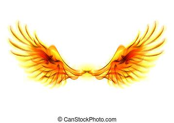 vuur, wings.
