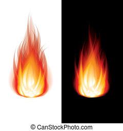 vuur, witte , vector, zwarte achtergrond