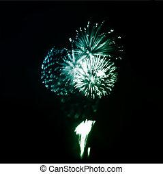 vuurwerk, in, de, nacht, sky., vector