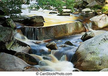 vydra, folyó, alatt, nemzeti park, sumava