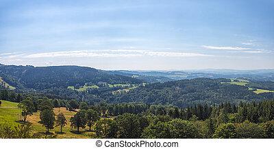 vyvýšenina, les, krajina, překrásný