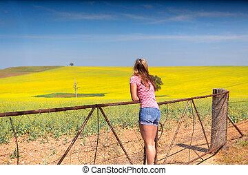 vzhled, kymácení, canola, samičí, vyvýšenina, farmlands, farma, nad, zlatý, sklon, branka