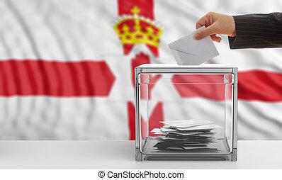 wähler, auf, a, nordirland, fahne, hintergrund., 3d,...
