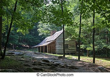 wälder, grün, blockhaus