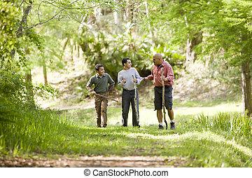 wälder, wandern, spanisch, vater, spur, söhne