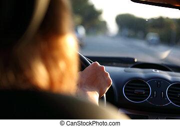 wóz, kierowca