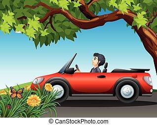wóz, napędowy, czerwony, człowiek