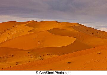 wüste, dünenlandschaft, landschaftsbild, mit, schatten,...