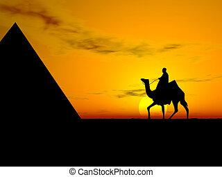 wüste, sonnenuntergang