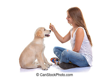właściciel, trening, szczeniak, pies