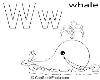 w, alphabet, färbung, kinder