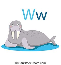 W alphabet vector animal