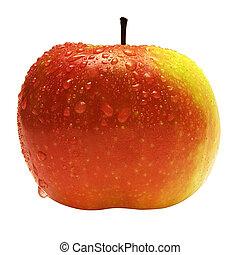 w/, gotas de lluvia, manzana