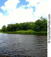 Waccamaw River in South Carolina