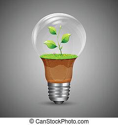 wachsen, innovation