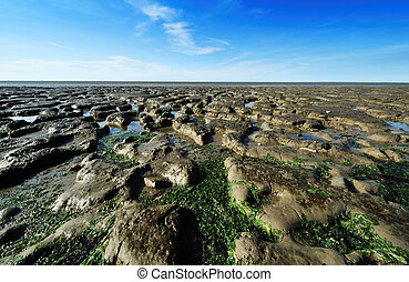 The Wadden Sea in Modergat, the Netherlands