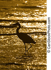 Wading egret silhouette