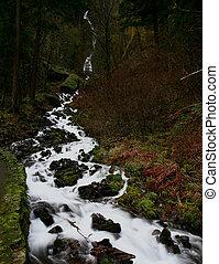 Wahkeena Falls II