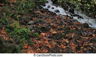 Wahkeena Falls on Columbia Highway - Wahkeena Falls along...