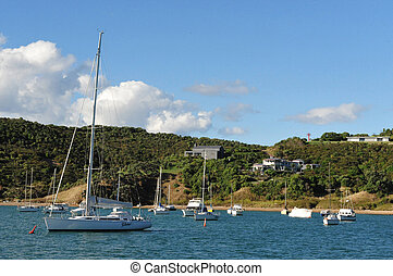 Waiheke Island New Zealand