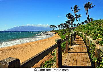 wailea, 浜, 小道, maui, ハワイ