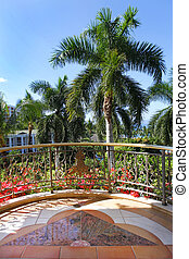 wailea, jarda, árvores., recurso, palma, grandioso, corte, ...
