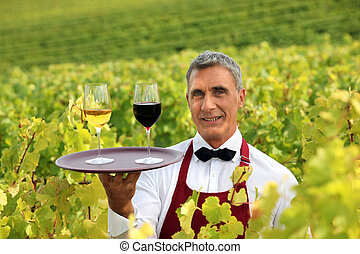 Waiter stood in vineyard with tray of wine glasses